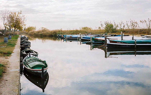 Boat trip in Natural Park of Albufera